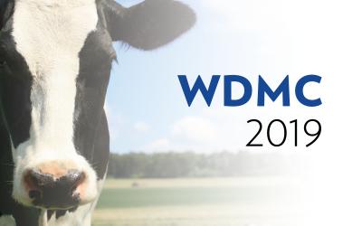 WDMC 2019