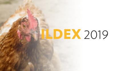 ILDEX 2019