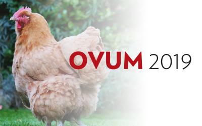 OVUM 2019